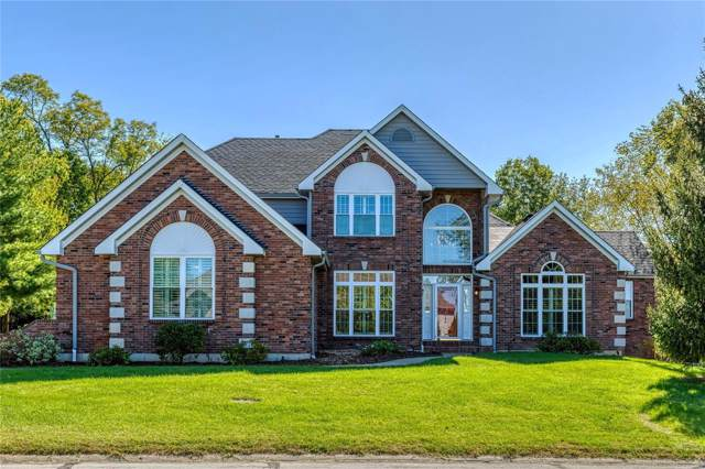 663 Clifden Drive, Weldon Spring, MO 63304 (#19090437) :: Kelly Hager Group | TdD Premier Real Estate