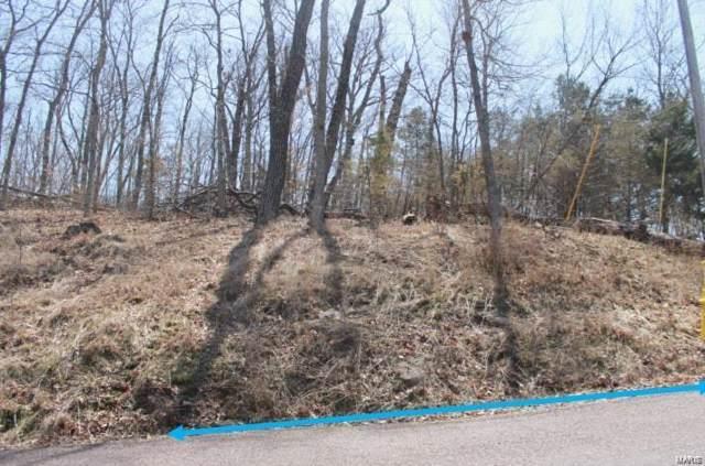1568 S Lake Sherwood, Marthasville, MO 63357 (#20002718) :: Hartmann Realtors Inc.