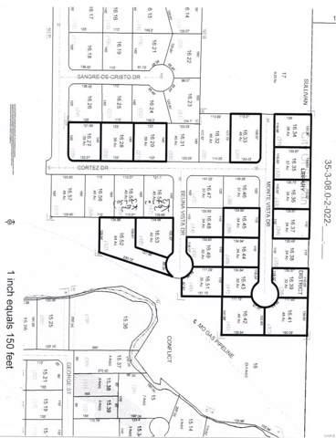 31 Monte Vista Dr., Sullivan, MO 63080 (#20002736) :: Kelly Hager Group | TdD Premier Real Estate