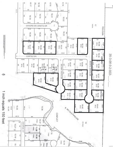 46 Buena Vista Dr., Sullivan, MO 63080 (#20002762) :: The Becky O'Neill Power Home Selling Team