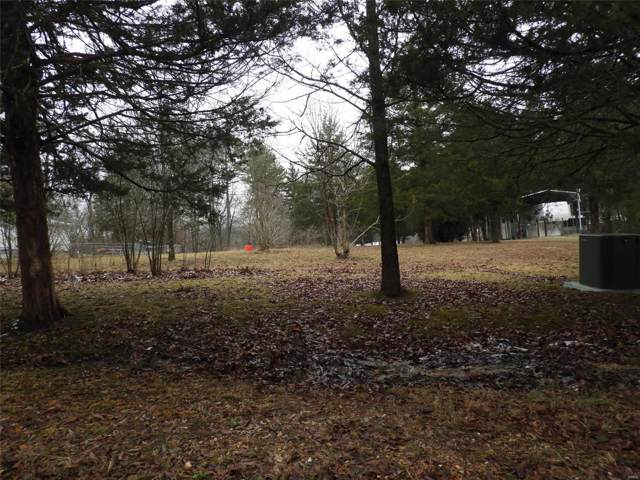 10197 Hillcrest Road, Potosi, MO 63664 (#20002976) :: Parson Realty Group