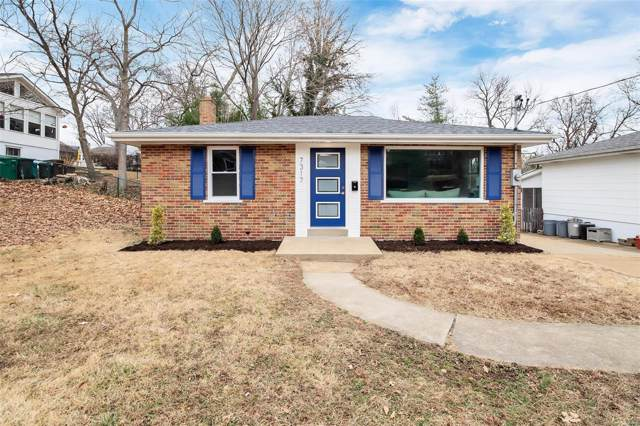 7317 Nottingham Avenue, St Louis, MO 63119 (#20003761) :: Sue Martin Team