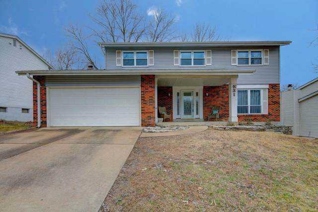 531 Green Forest Dr., Fenton, MO 63026 (#20004921) :: Sue Martin Team