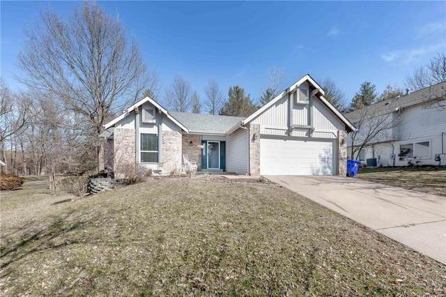 16811 Babler View, Wildwood, MO 63011 (#20005893) :: Kelly Hager Group | TdD Premier Real Estate