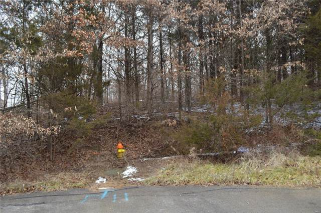 234 Red Cedar Lot 234 Court, Foristell, MO 63348 (#20006213) :: Clarity Street Realty