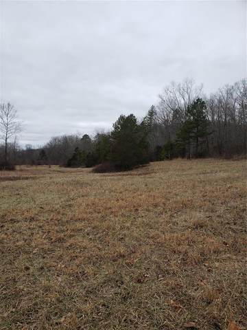1960 County Road 5630, Bunker, MO 63629 (#20007014) :: Matt Smith Real Estate Group
