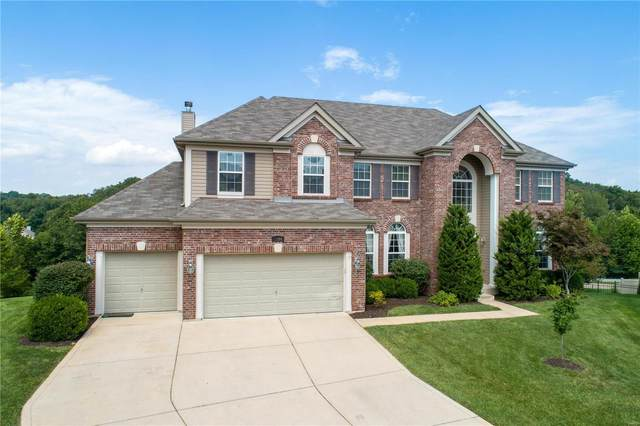 1204 Birch Meadow Court, High Ridge, MO 63049 (#20007113) :: Clarity Street Realty