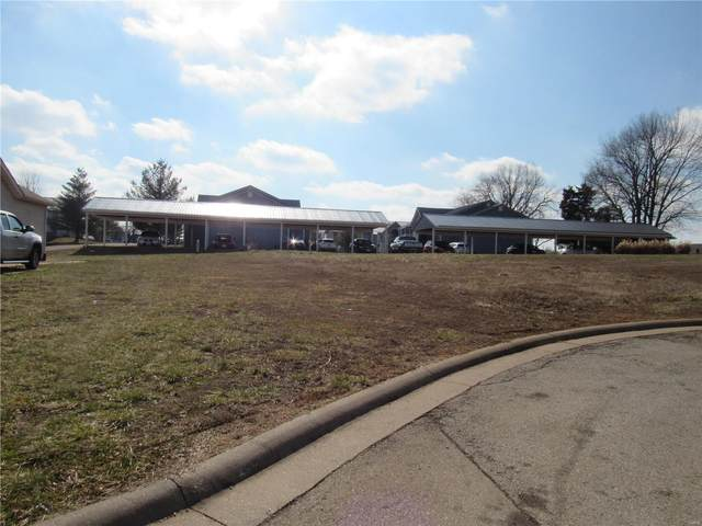 425 Ridgeview Drive, Desloge, MO 63601 (#20008009) :: Realty Executives, Fort Leonard Wood LLC