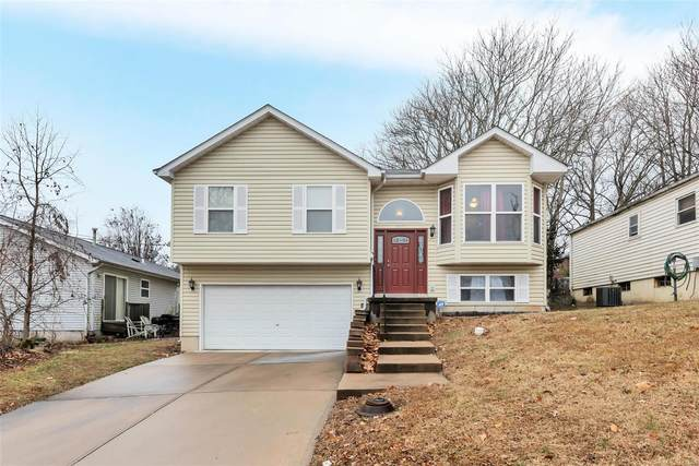 607 Cornell Avenue, Webster Groves, MO 63119 (#20008173) :: Clarity Street Realty