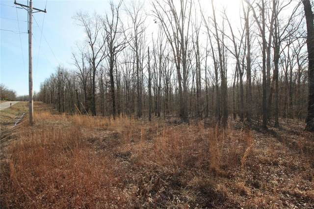 0 Lot 4 Holiday Hills Dev, Wappapello, MO 63966 (#20008418) :: Matt Smith Real Estate Group