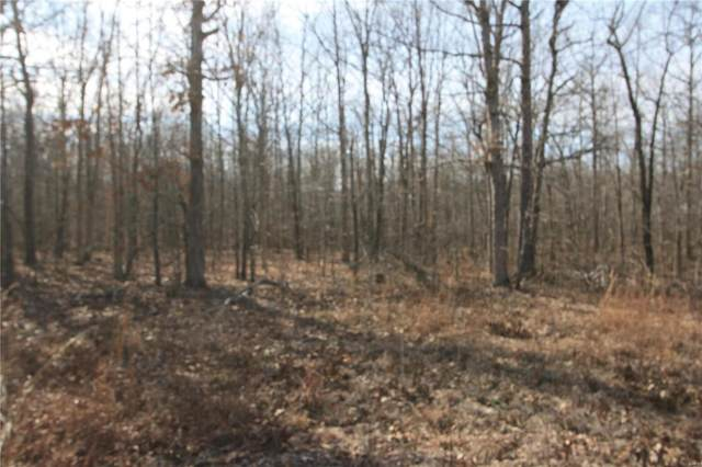 0 Lot 6 Holiday Hills Dev, Wappapello, MO 63966 (#20008421) :: Matt Smith Real Estate Group