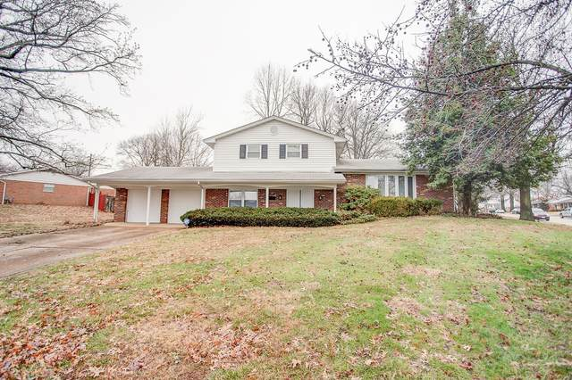 2305 Wendy Way Drive, Belleville, IL 62221 (#20008455) :: Fusion Realty, LLC