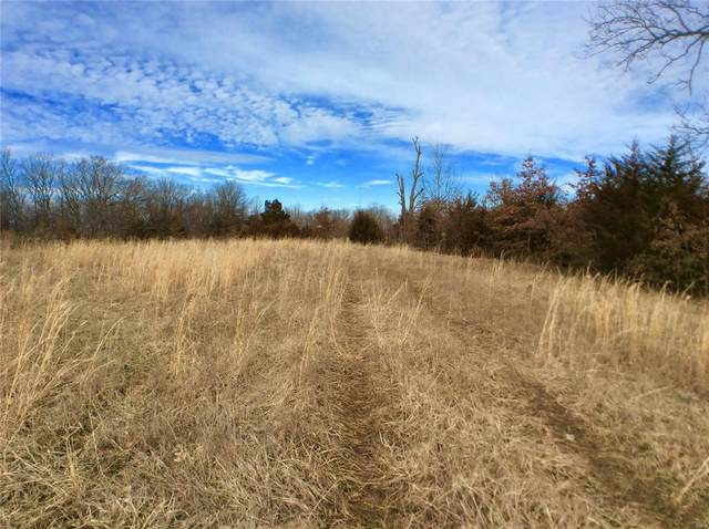 0 124.5 +/- Acres Highway B, Wellsville, MO 63384 (#20008773) :: Sue Martin Team