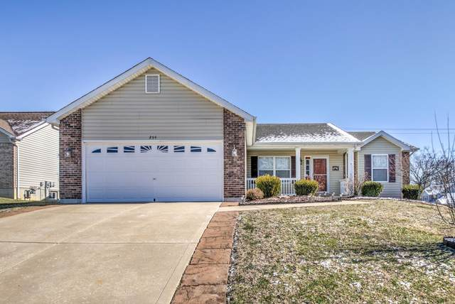 204 Little Flower Court, Wentzville, MO 63385 (#20008932) :: Parson Realty Group