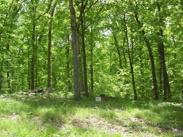 0 Rosedon Ct, Lot 13, Warrenton, MO 63383 (#20009075) :: Parson Realty Group