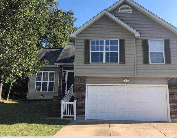 14 Adventura Drive, Festus, MO 63028 (#20009129) :: St. Louis Finest Homes Realty Group