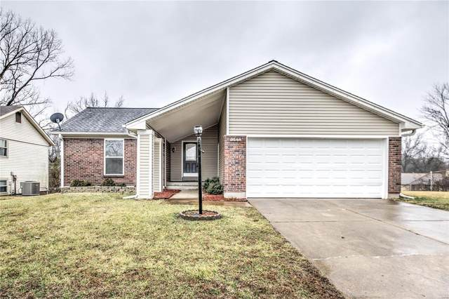 5290 Springtrail Drive, Black Jack, MO 63033 (#20009133) :: The Becky O'Neill Power Home Selling Team