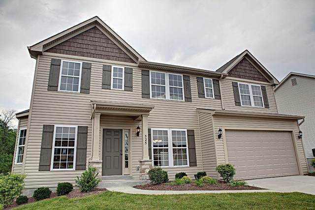 3011 Leesburg Place, Imperial, MO 63052 (#20009257) :: Kelly Hager Group | TdD Premier Real Estate