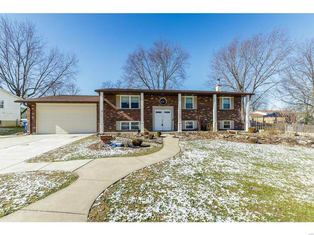 703 Michael Avenue, Wentzville, MO 63385 (#20009258) :: St. Louis Finest Homes Realty Group