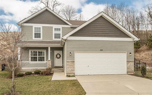 922 Meramec Grove Court, Ballwin, MO 63021 (#20009308) :: Sue Martin Team