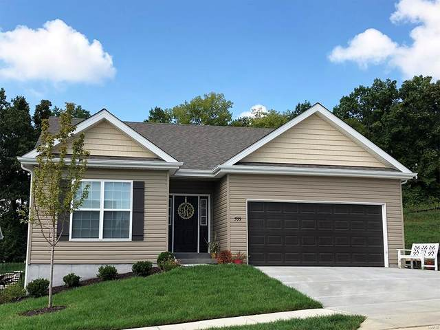 150 Brookview Way Drive, O'Fallon, MO 63366 (#20009501) :: Kelly Hager Group | TdD Premier Real Estate