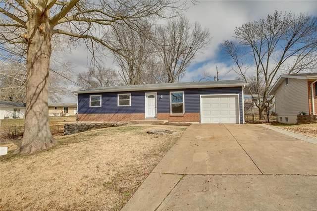 169 Rockview, St Louis, MO 63129 (#20009532) :: Hartmann Realtors Inc.