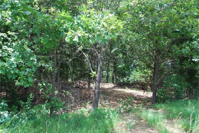 4495 Highway 63, Cabool, MO 65689 (#20009683) :: Sue Martin Team