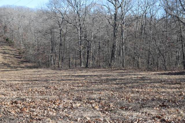 34 +/- Acres Prather Road, Wright City, MO 63390 (#20009848) :: Clarity Street Realty