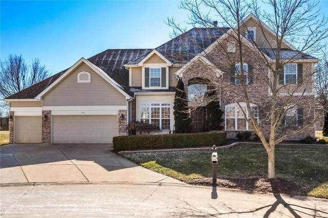 258 Bountiful Pointe, Grover, MO 63040 (#20009930) :: St. Louis Finest Homes Realty Group