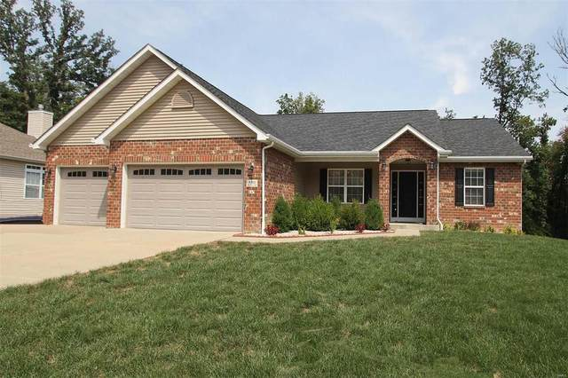4913 Lone Rock Lane, Smithton, IL 62285 (#20010090) :: Clarity Street Realty