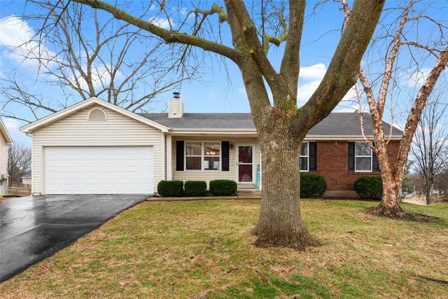 5 Hollow Tree Court, Saint Peters, MO 63376 (#20010111) :: Parson Realty Group