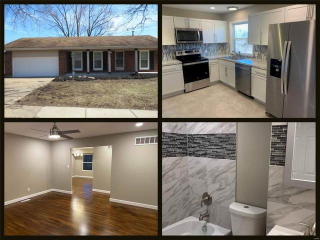 4318 Rhine Drive, Florissant, MO 63033 (#20010468) :: Clarity Street Realty