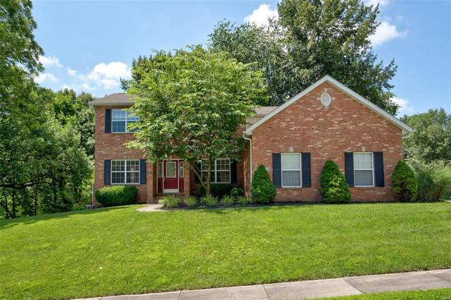 825 Wildwood, O'Fallon, IL 62269 (#20010866) :: Kelly Hager Group   TdD Premier Real Estate
