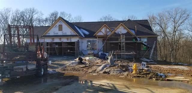 525 Stonewolf Creek Drive, Wentzville, MO 63385 (#20010985) :: Sue Martin Team
