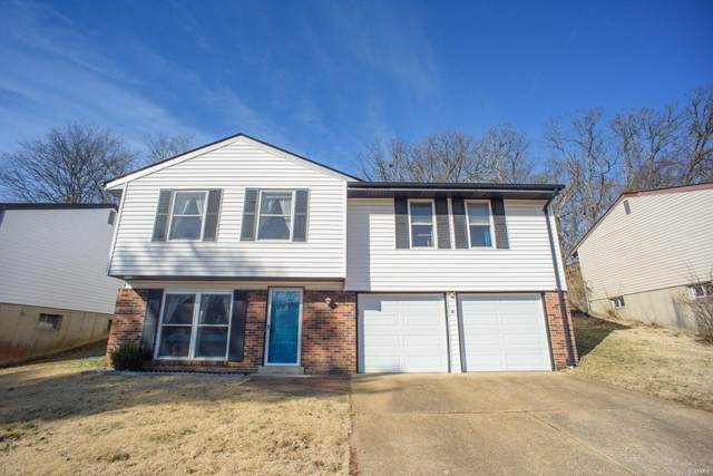 2577 Somerville, High Ridge, MO 63049 (#20011883) :: Walker Real Estate Team