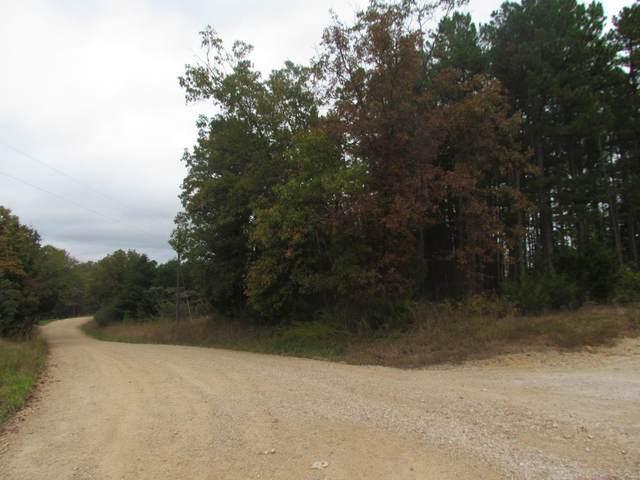 33 Possum Hollow-Hwyh, Leasburg, MO 65535 (#20012149) :: Clarity Street Realty