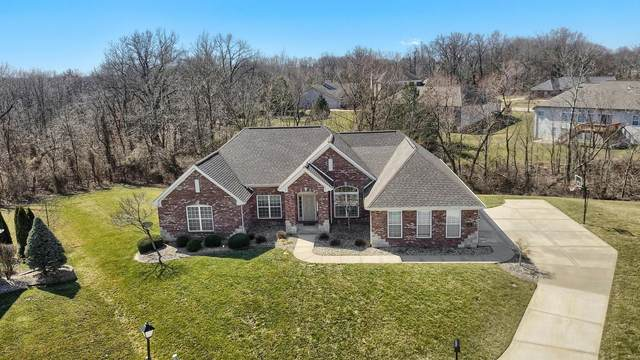 3301 Gadwall Court, Swansea, IL 62226 (#20014064) :: Peter Lu Team