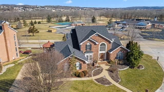 505 Overlook Terrace Court, Eureka, MO 63025 (#20014375) :: The Becky O'Neill Power Home Selling Team