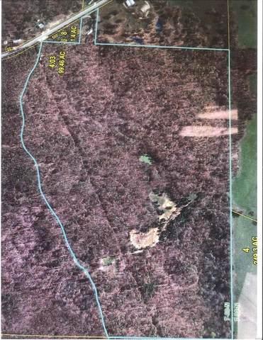 0 S Highway 19, Salem, MO 65560 (#20014454) :: Realty Executives, Fort Leonard Wood LLC