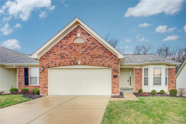 173 New Holland Drive, Chesterfield, MO 63017 (#20015665) :: Clarity Street Realty