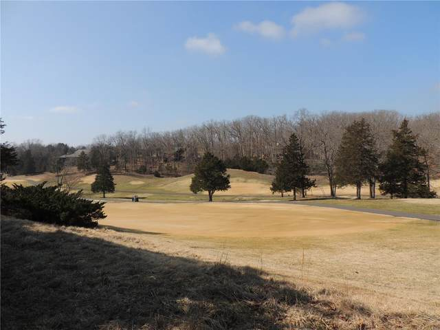 900 Silver Fox Drive, Innsbrook, MO 63390 (#20015826) :: St. Louis Finest Homes Realty Group