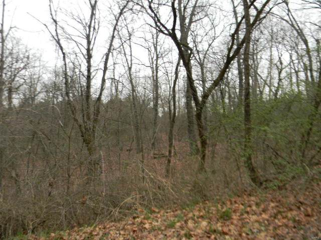 0 Clare Blk 2, Lots 30 & 31, New Haven, MO 63068 (#20016816) :: Matt Smith Real Estate Group