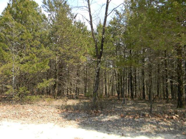 0 Meadow View Blk 4,Lots 47-49, New Haven, MO 63068 (#20017731) :: Clarity Street Realty
