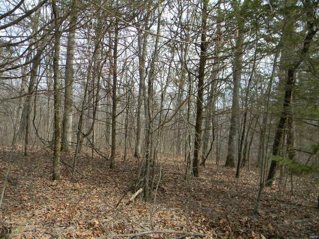 0 St Ann  Blk 1, Lot 129 & 130, New Haven, MO 63068 (#20017769) :: Clarity Street Realty