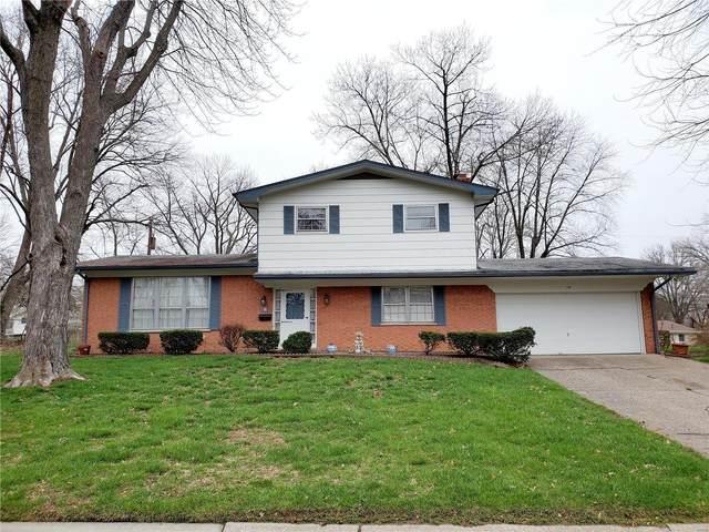 14 Chamberlain Court, Belleville, IL 62223 (#20018417) :: Fusion Realty, LLC