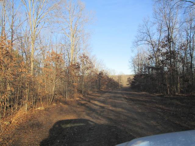 155 Pine Meadow Trail, Raymondville, MO 65555 (#20018610) :: Clarity Street Realty