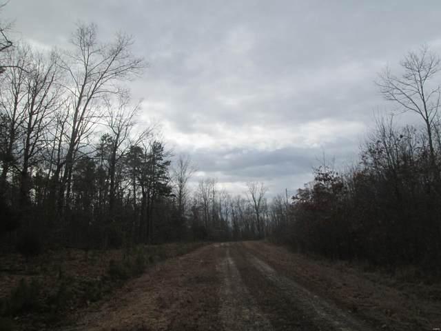 158 Heritage Trail, Raymondville, MO 65555 (#20018613) :: Clarity Street Realty