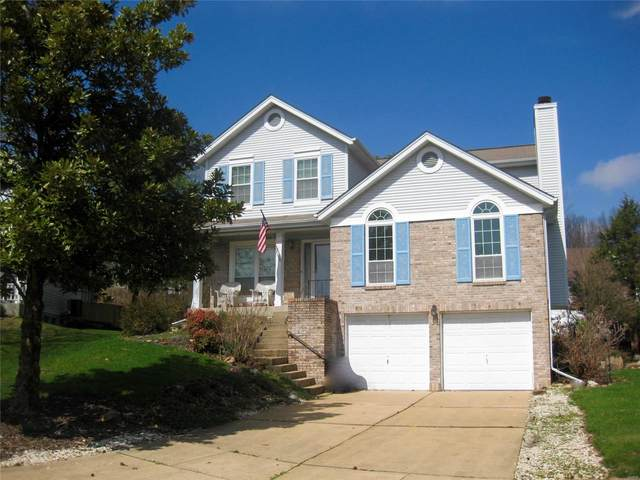 1015 Anna Meadows, Ballwin, MO 63021 (#20019001) :: St. Louis Finest Homes Realty Group