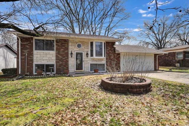 48 Potomac Drive, Fairview Heights, IL 62208 (#20019051) :: RE/MAX Professional Realty