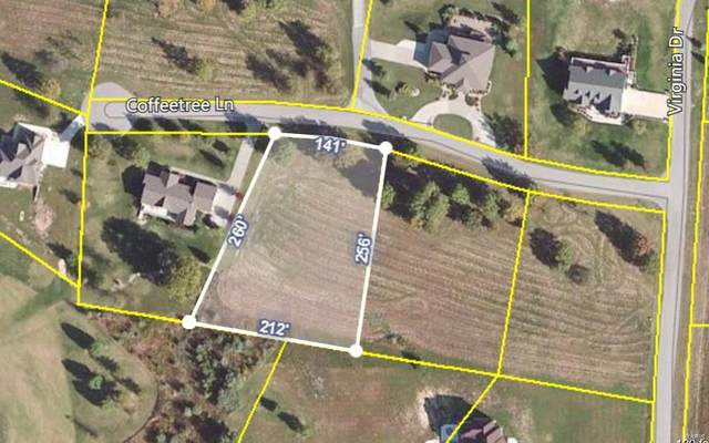 0 Stone Creek, MAKANDA, IL 62958 (#20021358) :: The Becky O'Neill Power Home Selling Team